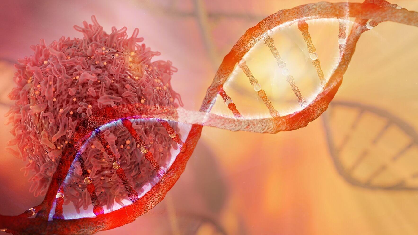 Fortschritt mit der CAR-T-Zell-Therapie